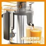 bella 13694 high power juice extractor